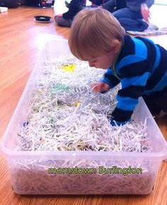 Create a sensory bin for toddlers
