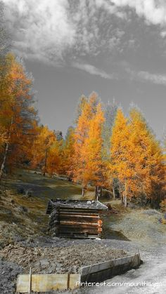 autumn in the #Stubai valley in Austria