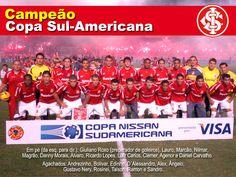 Campeão da Copa Sul-Americana - 2008