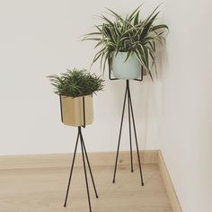 Enjoy green living with a nice Plant Stand - available in 2 sizes: http://www.fermliving.com/webshop/shop.aspx?eComSearch=True&ID=14&eComQuery=Plant+Stand