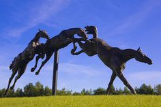 Under the Per Cent for Art Scheme, Horse Racing Ireland (HRI) commissioned a sculpture for the front of its headquarters building at Ballymany, Newbridge, Co Kildare. Siobhan Bulfin won the public competition with her entry of a bronze sculpture of t Learn how you can beat the bookies at their own game