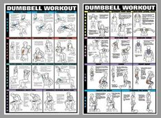 Dumbbell Workout 2-Poster Combo – Fitnus Posters Inc.