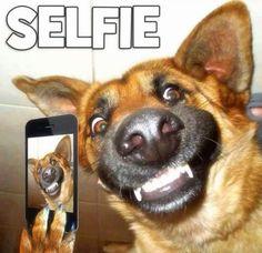 meme-cao-selfie
