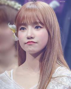 Kpop Girl Groups, Kpop Girls, Yuri, Honda, Uzzlang Girl, Japanese Girl Group, Kim Min, 3 In One, Interesting Faces