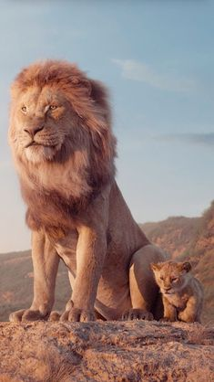"""Mufasa and Simba from """"The Lion King"""" - redneck Lion King Quotes, Lion King Art, Lion King Movie, Lion Art, Disney Lion King, The Lion King, Lion King Pictures, Lion Images, Images Of Lions"""