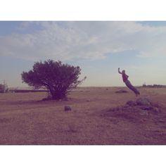 من و درخت