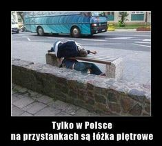 Where stories live Polish Memes, The End Is Near, Very Funny Memes, Smile Everyday, Read News, Reaction Pictures, Funny Comics, Haha, Life Hacks