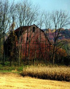 Autumn Barn  Location:    Fairfield Co OH  http://www.ohiobarns.com/otherbarns/photo/PhB35-23-02.html