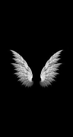 Angel Wings Simple iPhone 6 Plus HD Wallpaper.jpg 744×1,392 pixels