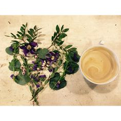 Coffee and flowers. 🌿☕️🌸
