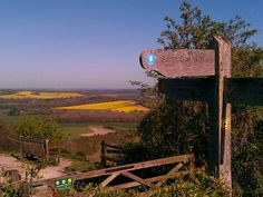 South Downs Way, Hampshire