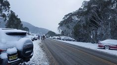 """""""Thredbo #roadtrip #travel #canoncamera #travelblogger #photography #backpacker #travelphotography #victoria #nsw #australia #straya #downunder #backpacking #snow #snowing #thredbo #jindabyne #snowy #snowymountainsnsw #snowymountains #mtkosciuszko #snowboard #skiing #skiing🎿 #ski"""" by @griffprodukiez. #pic #picture #photos #photograph #foto #pictures #fotografia #color #capture #camera #moment #pics #snapshot #사진 #nice #all_shots #写真 #composition #фото #europe #roadtrip #여행 #outdoors #ocean…"""
