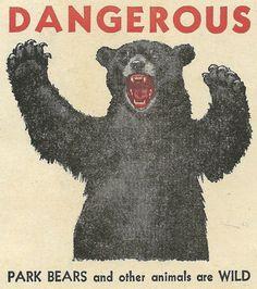 vintage bear warning poster