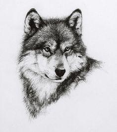 Wildlife | Fine Art by Heather Theurer - Part 2