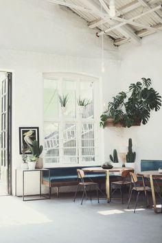Ingensteds, Brenneriveien 9, Oslo Nightclub, Plants, Velvet sofa, Walnut table, Brass, Philodendron monstera,