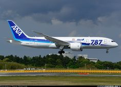 All Nippon Airways - ANA JA814A Boeing 787-8 Dreamliner aircraft picture