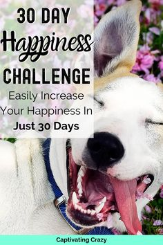 30 Day Happiness Challenge That Will Change Your Life! Complete the tasks set for each day & find our how to become happier within 30 days! How To Become Happy, Are You Happy, Happy Day Quotes, Compliment Someone, Mental Health Journal, Happiness Challenge, Ways To Be Happier, Self Care Activities, 30 Day Challenge