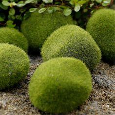 새로운 녹색 인공 이끼 돌 3 크기 선택 잔디 Bryophytes 홈 정원 분재 장식 정원 경로
