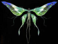 Moonlight Butterfly | Dark Souls Wiki