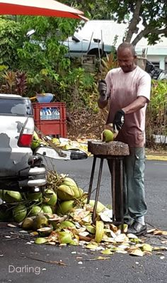 Coconuts water seller - French West Indies