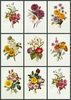Digital collage sheets each with nine floral prints - Clip art for your cards, paper crafts, scrapbooks, decoupage - Remember older print...