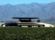 First, get the pronunciation right: O-Four-Knee-Err, because it's Spanish, not French, being located in Argentina. Now, admire how the green fields give way to the building, which winds up to a perfect frame of the Andes Mountains. To minimize the use of pumps, this winery uses gravity, and somehow this architecture manages to suggest that. [O. Fournier]