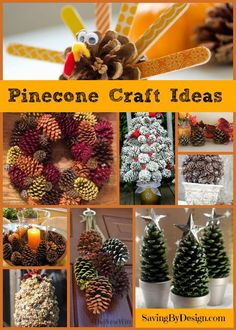 Got pine cones? This DIY fall decor will have your home festively fabulous in no time! Take a look at these great pine cone craft ideas! Homemade Crafts, Crafts To Make, Crafts For Kids, Diy Crafts, Autumn Crafts, Holiday Crafts, Holiday Fun, Thanksgiving Projects, Pine Cone Crafts