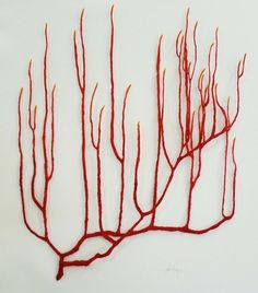contemporaryfibers: Meredith Woolnough. Red Coral Branch. 2010. Embroidery on paper. Thats lovely.