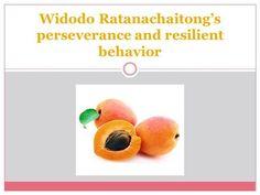 Widodo Ratanachaitong's perseverance and resilient behavior by widodoratanachaitong via authorSTREAM