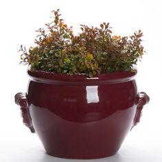 O Cachepot Marsala é um objeto clássico e elegante, ideal para acomodar um belo arranjo floral ou folhagens em seu living. Uma peça feita em cerâmica na cor marsala. #Cachepo #LojaSoulHome