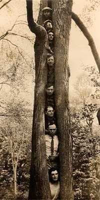 tree people surreal real life vintage photography , my question isnt why exactly but how ? not a bunch of hippy tree huggers , but a hippy tree hugger funny pictures taken while touring with friends Antique Photos, Vintage Pictures, Vintage Photographs, Old Pictures, Vintage Images, Old Photos, Weird Trees, Bizarre Photos, Tree People