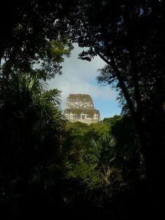 Tikal temple, in the Jungle...Guatemala.