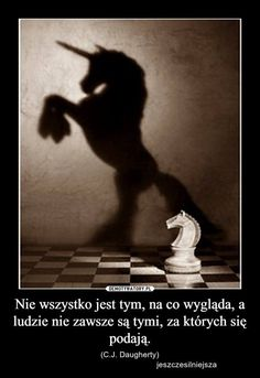 Horse Riding, Words Quotes, Horses, In This Moment, Thoughts, Humor, Polish, Inspiration, Poster