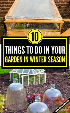 10 Things To Do In Your Garden In Winter Season. #gardening #wintergarden