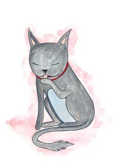 Grey Cat by henrihopper