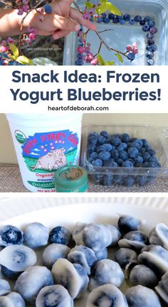 Looking for a healthy snack that satisfies your sweet tooth? You need to try these frozen yogurt blueberries. Perfect for kids and adults! #recipe #healthysnack #snacksforkids #snackidea