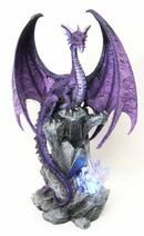 Large Hoarfrost Twilight Dragon Guarding LED Light Crystal Elements St– Ebros Gift Water Dragon, Green Dragon, Battery Operated Led Lights, Fantasy Dragon, Collectible Figurines, Twilight, Lawn, Hand Painted, Statue