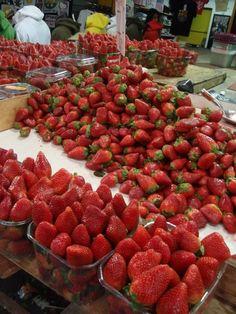 Strawberry Season In Israel
