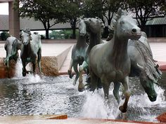 What an amazing idea for a sculpture/fountain. This piece is called The Mustangs of Las Colinas, located in Irving Texas.