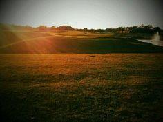 Morgan Creek Golf Club in Roseville, CA