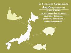La Consejería Agropecuaria Japón promueve la exportación de proyectos de los sectores agrícolas, ganadero, pesquero, alimentario y de desarrollo rural. SAGARPA SAGARPAMX