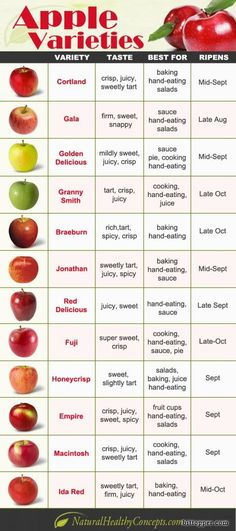 Apple varieties infographic from Natural Healthy Concepts. Learn more about apple varieties today! Fruit Recipes, Apple Recipes, Noodle Recipes, Vegetable Recipes, Cooking Tips, Cooking Recipes, Food Tips, Beginner Cooking, Cooking Videos