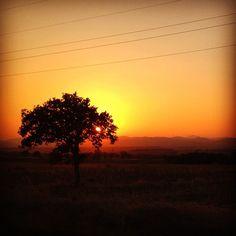 Eliza's K photos | #nature_greece #igers #picoftheday #photooftheday...