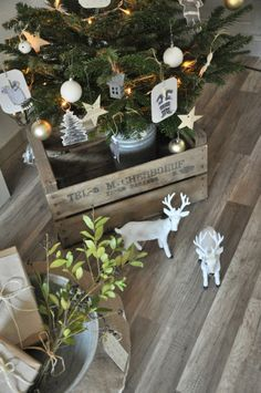 Image result for cosa belle interiors christmas