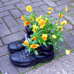 Shoe and boot planter ideas