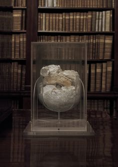 The photograph Urn is the result of a collaboration between visual artist Paweł Bownik and the National Library. The object in the photograph symbolises cultural heritage destroyed during the Warsaw Uprising. Warsaw Uprising, Urn, Globe, Culture, Artist, Poland, Maya, Photos, Speech Balloon