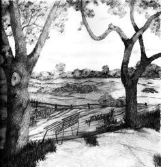 Image from http://pic.pilpix.com/13/13497/nature-sketch.jpg.