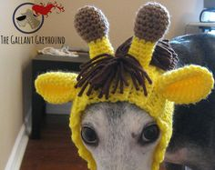Minion Snood for Greyhounds Crochet Pattern por TheGallantGreyhound