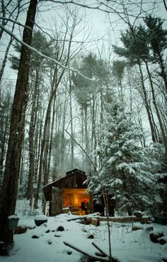 Rustic Cabin in the Snowy Woods