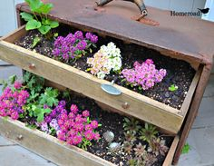 homeroad: Vintage Toolbox Garden - I think I'm going to use an old dresser with drawers